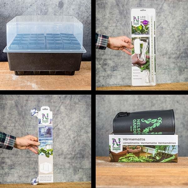 Rootmaster black germination kit